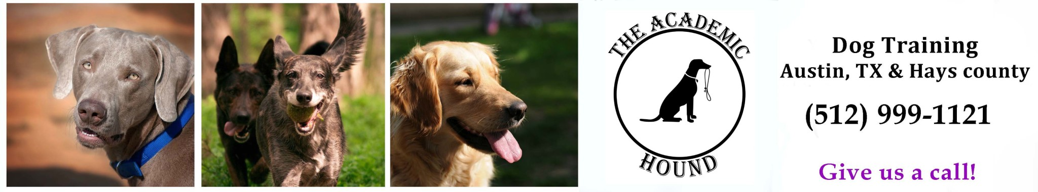 Academic Hound Dog Training Logo