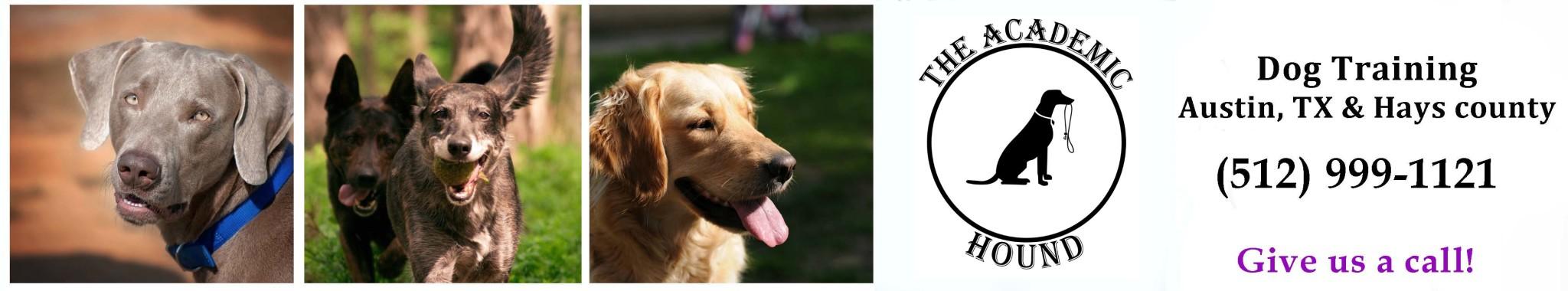 Academic Hound Dog Training Logo